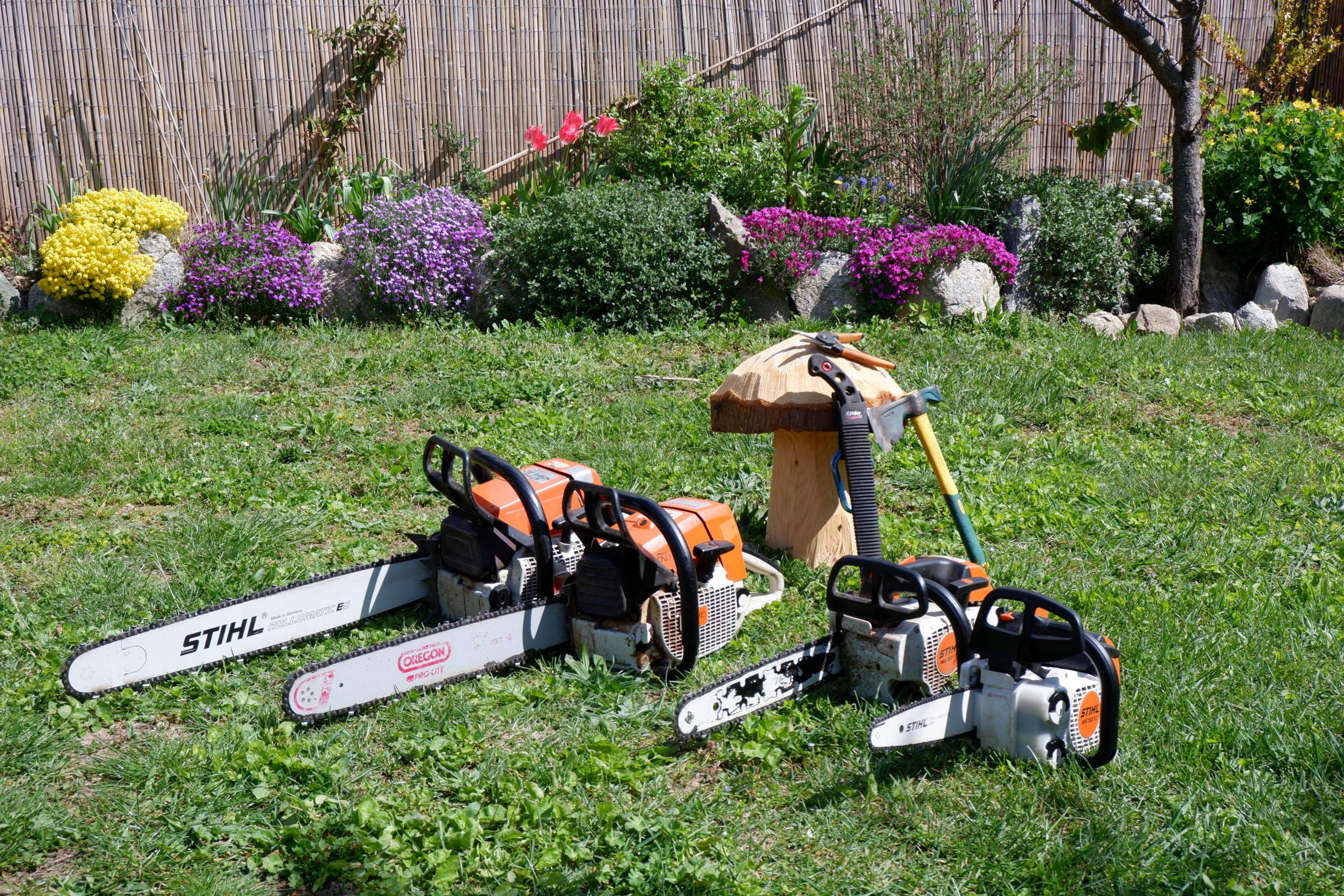 les outils pour tailler son arbre